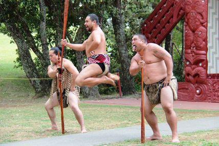 maori-113729__480.jpg